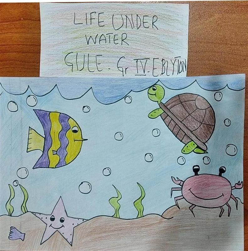 Life Underwater Art